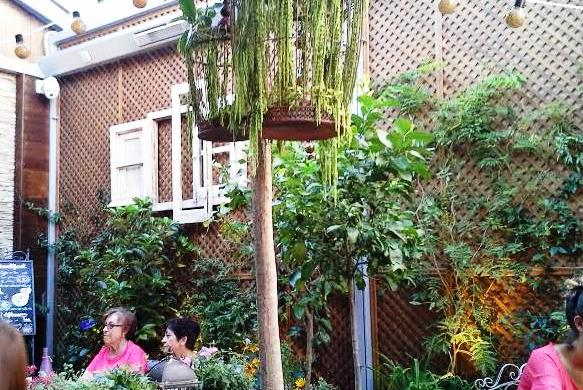 Tres terrazas de azotea diferentes te veo en madrid for Jardin secreto salvador bachiller