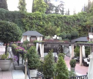 Jardin hotel Miguel Angel Te Veo en Madrid