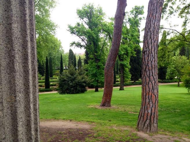 Parque de el Capricho foto de Arancha