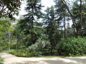 Parque Quinta de los Molino 001