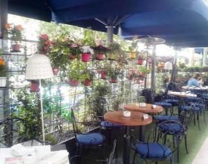 Restaurante el Gordo de Velázquez , terraza Te Veo en Madrid
