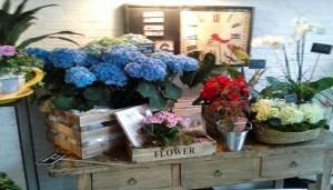 Salon-del-Fleures.-Tienda-de-flores-y-meriendas-Te-Veo-en-Madrid