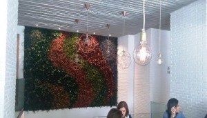 restaurante_fanfan_pared_jardin_te_veo_en_madrid