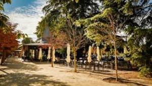 terraza_el_ancla_parque_el_retiro_te_veo_en_madrid