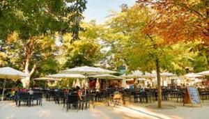 terraza_la_cabaña_parque_el_retiro_te_veo_en_madrid
