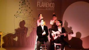 centro-cultural-flamenco-cuadro-te-veo-en-madrid.jpg