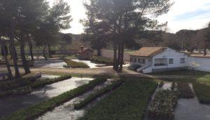 la-casa-de-campo-paseo-con-lucia-valcarcel-al-salirdespues-del-confinamiento-te-veo-en-madrid.jpg
