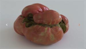 Restaurante-el-Qüenco-de-pepa-tomates-tienda-te-veo-en-madrid.png