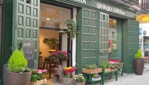 Las-mejores-floristerias-ginkgo-bilova-te-veo-en-madrid.jpg