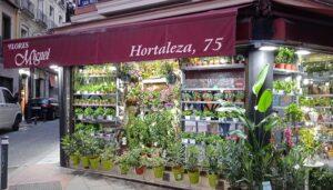 Las-mejores-floristerias-miguel-te-veo-en-madrid.jpg