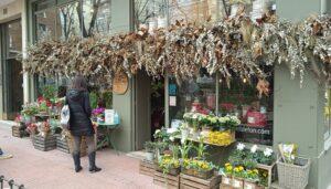Ruta-mejores-floristerias-sally-hambleton-te-veo-en-madrid.jpg