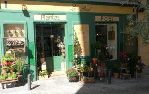 Las-mejores-floristerias-la-real-te-veo-en-madrid