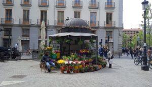 Las-mejores-floristerias-amparo-te-veo-en-madrid-2.jpg