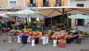 Las-mejores-floristerias-balcones-de-madrid-te-veo-en-madrid-2.jpg