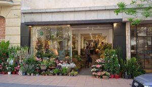 Las-mejores-floristerias-columelas-te-veo-en-madrid-2.jpg