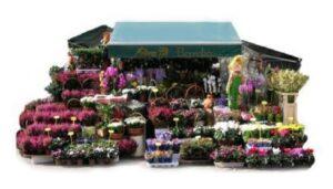 Las-mejores-floristerias-flores-pili-de-madrid-te-veo-en-madrid.jpg
