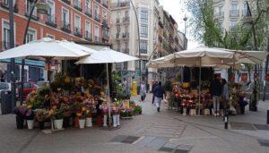 floristerias-la-beata-enamorada-izquierda-marta-la-piadosa-te-veo-en-madrid-2.jpg