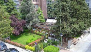 las-mejores-terrazas-flores-de-alcachofa-te-veo-en-madrid.jpg