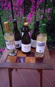 El-coto-de-rioja-gama-de-vinos-blancos-te-veo-en-madrid.jpg