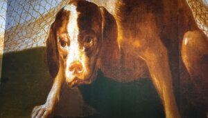 exposicion-ingoya-detalle-perro-te-veo-en-madrid.jpg